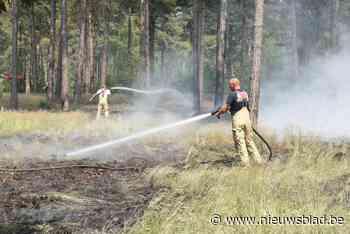 Natuurbrand legt grote lap vegetatie in de as