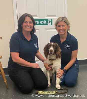 Ifold vet steps out to help care for police dogs - Midhurst and Petworth Observer