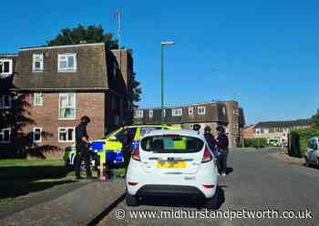 Chichester armed police incident: Police issue update - Midhurst and Petworth Observer