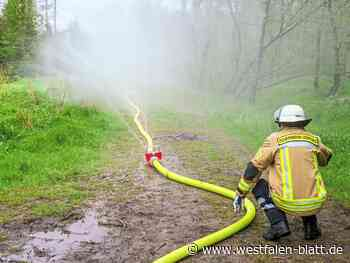 Großübung der Feuerwehr im Torfbruch zwischen Lichtenau und Bad Driburg – 150 Einsatzkräfte aus ganz OWL im Einsatz: Stresstest für die Löschwasser... - Westfalen-Blatt