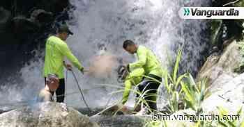 Hallan cuerpo de un joven en una quebrada de Floridablanca - Vanguardia
