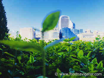 Why the food industry has a golden opportunity to be the steward of the environment
