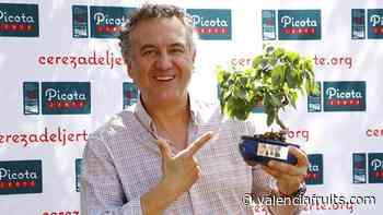 El periodista Roberto Brasero recibe el Premio a la Excelencia Picota del Jerte 2021 - Valencia fruits