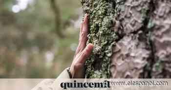 Cabreiroá se une a WWF España para restaurar un paisaje gallego afectado por incendios - El Español