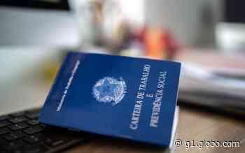 Sistema de Emprego de Aparecida de Goiânia oferece 459 vagas de trabalho nesta semana - G1