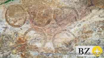 Erstmals zu sehen: Eisenzeitliche Funde aus Nordsteimke