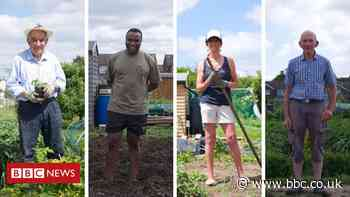 Covid: How have allotments helped people during the pandemic?