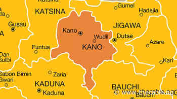 Police arrest man 'who robbed over 1,000 houses' in Kano - TheCable