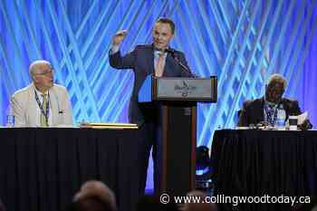 Southern Baptists resist push from right in divisive vote - CollingwoodToday