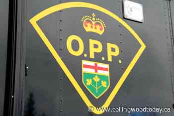 Drug trafficking, weapons charges laid against two teens in Wasaga Beach - CollingwoodToday.ca