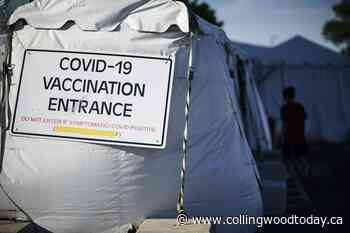 US COVID-19 deaths hit 600,000, equal to yearly cancer toll - CollingwoodToday