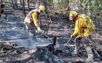 Prolongada sequía causante de ola de incendios forestales - El Sol de Parral
