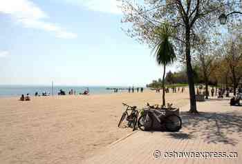 Beaches safe for swimming - Oshawa Express