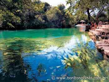 Margens do Rio Formoso, em Bonito, podem se tornar áreas de preservação permanente - Bonito Notícias