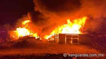 Infierno en El Paraíso... se incendian tejabanes al poniente de Saltillo - Vanguardia.com.mx