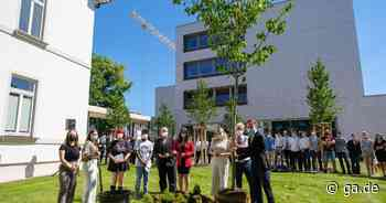 Realschule Sankt Josef in Bad Honnef: Abschlussjahrgang pflanzt einen Baum für die Erinnerung - General-Anzeiger Bonn