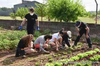 El Banco de Tierras quiere dar un impulso a la horticultura - El Bierzo Digital