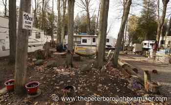 Consultant backs keeping Lakefield Campground operating   ThePeterboroughExaminer.com - ThePeterboroughExaminer.com