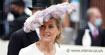 'Sophie Wessex safe pair of hands royals need in time of distress & disharmony'