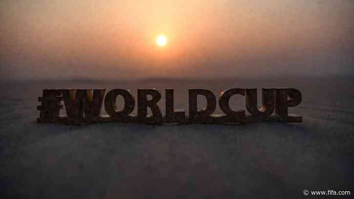 International stakeholder group to support ensuring an inclusive FIFA World Cup launched