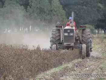 Controles a la destrucción de rastrojos del algodón en Chaco - Argentina.gob.ar Presidencia de la Nación