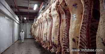 Por qué la Argentina no puede arriesgarse a que Israel deje de comprarle carne - infobae
