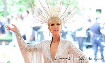 Celine Dion delights fans with beautiful Pride post