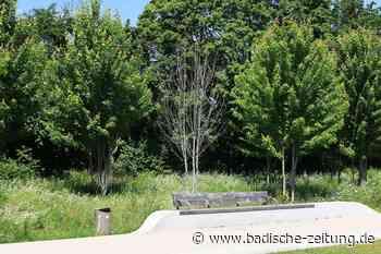 Bereits 35 junge Bäume auf dem Landesgartenschaugelände sind tot - Lahr - Badische Zeitung