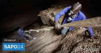 Polícia sul-africana descobre 20 corpos de mineiros em mina abandonada - SAPO 24