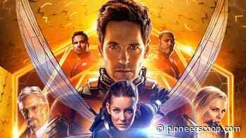 "Paul Rudd confirms the filming for ""Ant-Man 3"" has begun! - Pioneer Scoop"