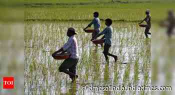 To keep fertiliser prices in check, cabinet okays Rs 14,775 crore subsidy