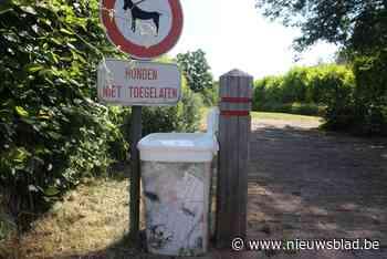 Gemeente pakt sluikstorten aan door… ruim 80 vuilnisbakjes w... (Beersel) - Het Nieuwsblad