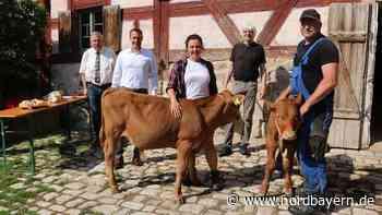 Hanni und Fritz sind da: Tierischer Zuwachs im Freilandmuseum - Nordbayern.de