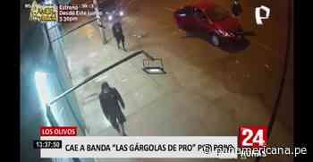"""Los Olivos: cae banda """"Las Gárgolas de Pro"""" por robo - Panamericana Televisión"""