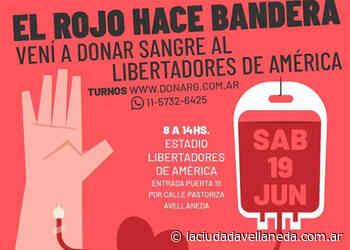 Convocan a participar de campaña de donación de sangre - Diario La Ciudad de Avellaneda