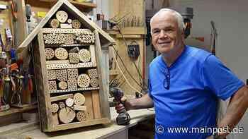 Stammheim Insektenhotel: Wellness für Wildbienen und Hummeln - Main-Post