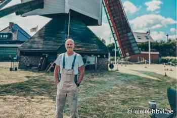 Erwin Hamers is al 15 jaar molenaar in De Stermolen - Het Belang van Limburg