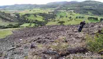 Destruyeron varios frailejones en el Páramo del Almorzadero - Caracol Radio