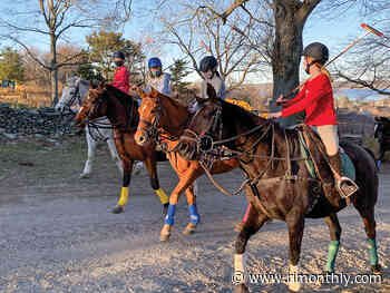 Giddy Up: Newport Polo Offers Lessons for Kids - Rhode Island Monthly