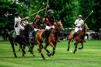 Oak Brook polo returns with 10 matches for 2021 season - Chicago Tribune