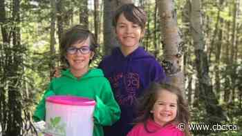 These Stephenville kids just started their own composting business - CBC.ca