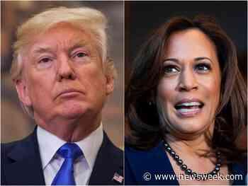 Donald Trump Set to Visit Border Before Kamala Harris - Newsweek