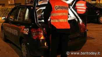 Al volante dopo aver bevuto troppo, beccati dai carabinieri: scattano ritiro della patente e denuncia per cinque automobilisti - BariToday