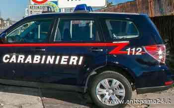 Rapina in villa nel casertano, preso il sesto uomo della banda - anteprima24.it
