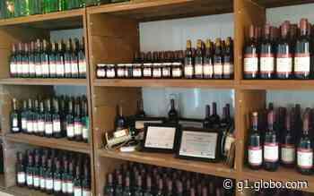 Prefeitura de Feira de Santana proíbe venda de bebida alcoólica durante toque de recolher até 21 de junho - G1
