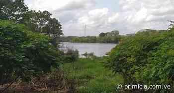 Cota del río Orinoco llegó a 13,98 metros sobre el nivel del mar - Diario Primicia - primicia.com.ve
