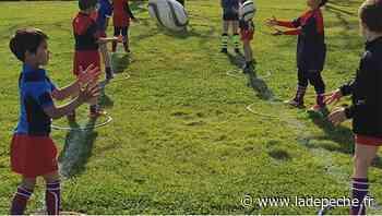 Lavaur. Les gamins de l'école de rugby sur les tournois - ladepeche.fr