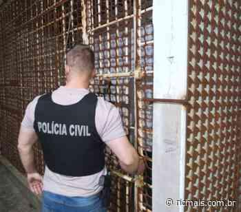 Quatro pessoas são detidas por furtos e roubos nos Campos Gerais - RIC Mais