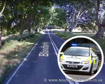 One taken to hospital after three car crash in East Dorset - Bournemouth Echo
