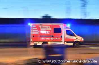 Unfall in Vaihingen an der Enz - Opel schleudert in ein Blumenbeet - Stuttgarter Nachrichten